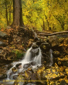 Upper Oak Creek Falls