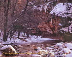Snowy Oak Creek